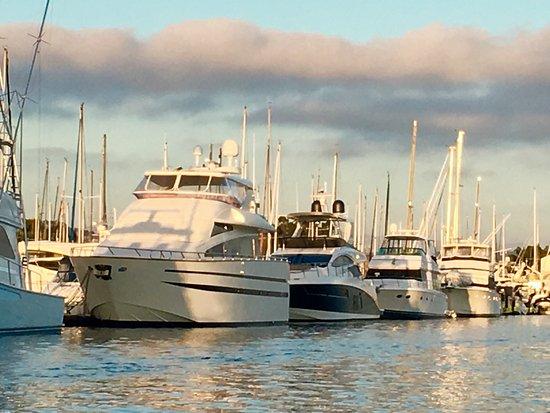 DANA POINT HARBOR, CA, so many 😍Beautiful boats at 🌅in the Harbor!