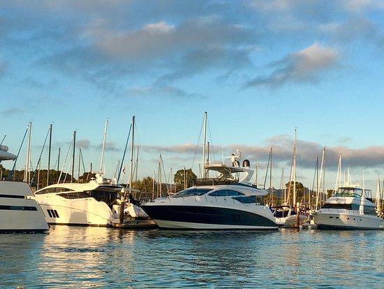 ดานาพอยต์, แคลิฟอร์เนีย: DANA POINT HARBOR, CA, so many 😍Beautiful boats at 🌅in the Harbor!