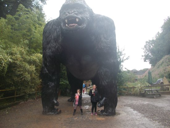 Wookey Hole, UK: Our little monkeys with a big one!