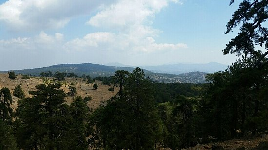 Troodos, Cypr: View during the hike ;-)