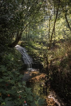 Pinheiro da Bemposta, Portugal: La chute d'eau