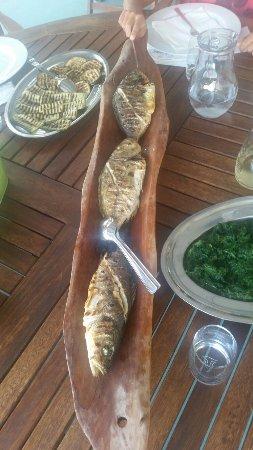 Hvar Island, Kroatien: One of the best fish restaurants on Hvar.