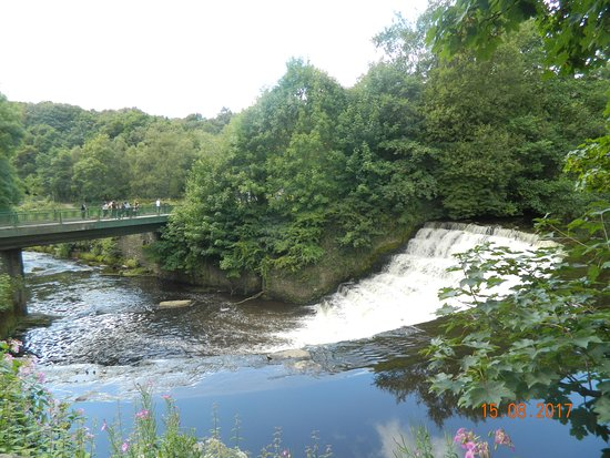 Stockport, UK: etherow country park