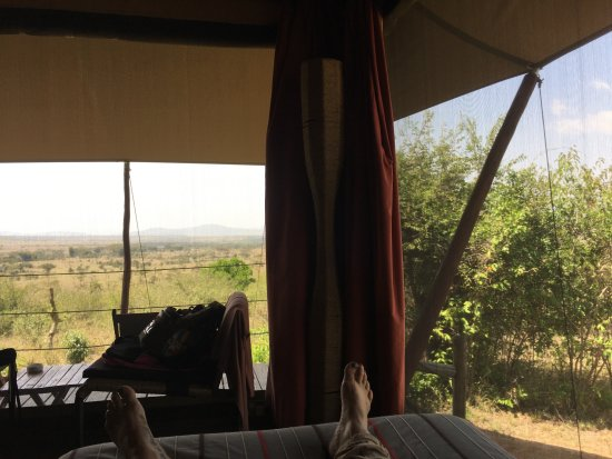 Eagle View, Mara Naboisho: Taken from my bed ; )