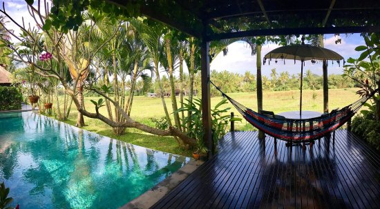 Lodtunduh, إندونيسيا: Our wonderful infinity pool overlooking the rice fields!