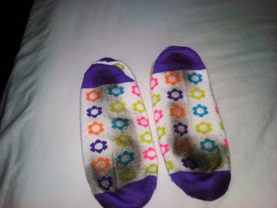 Motel 6 Tumwater - Olympia: My socks after 10-15 minutes walking in the room