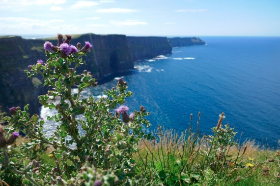 Doolin, ไอร์แลนด์: Facing North towards the cliffs