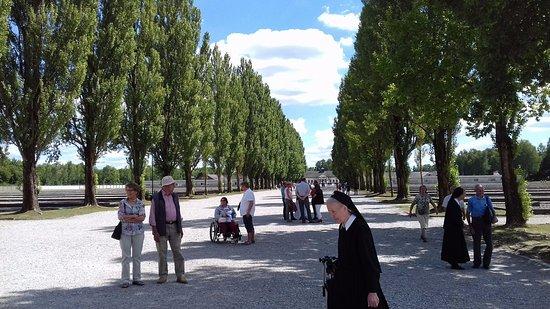 Dachau, Alemania: Aleja w obozie