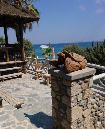 Kefalos, Greece: IMG_20170805_152344_929_large.jpg