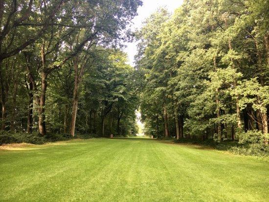 Delville Wood War Memorial: photo9.jpg