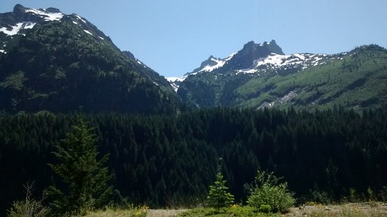 Mount Rainier: os codjuvantes
