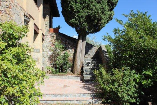 Capannori, Italia: photo3.jpg