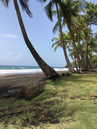 Trois Rivieres, Guadeloupe: photo2.jpg