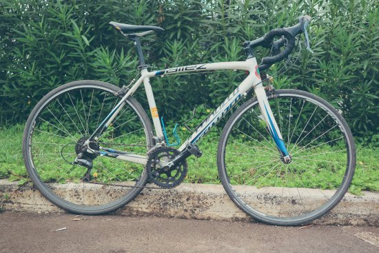 Specialized Allez - Picture of Kauai Cycle, Kapaa - TripAdvisor