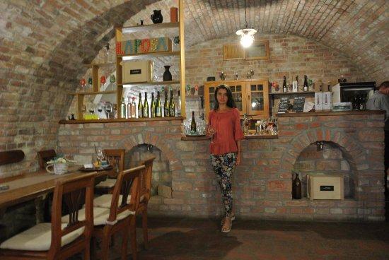 Badacsonytomaj, Hongaria: Tarihi şarap mahzeninin bu bölümü restaourantın kapalı alanı olarak kullanılıyor.