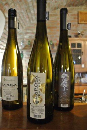 Badacsonytomaj, Hongaria: Tadım için sunulan beyaz şaraplar