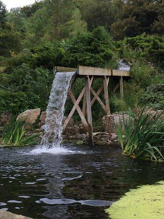 Matlock Bath, UK: waterfall
