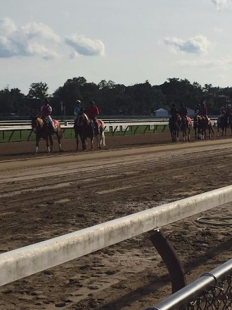 Saratoga Springs, NY: You can stand right next to the track and watch the race.
