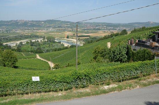 Barbaresco, Ιταλία: view in front of the terroir