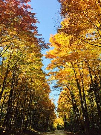 Wilmington, VT: Fabulous fall