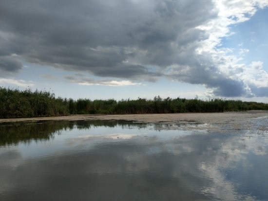 Danube Delta: IMAG0942_large.jpg