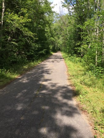 Bancroft, Canadá: Driveway into parking area on west side of York River