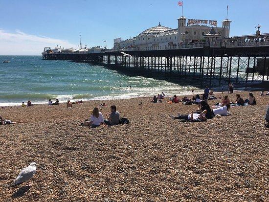 Hotels Near Brighton Beach Uk