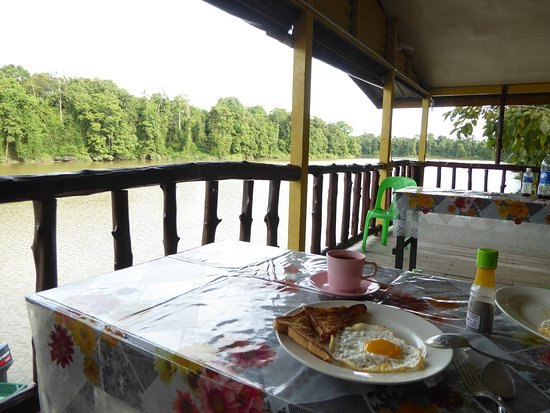 Kinabatangan District, Malasia: Breakfast at the camp. The best view ever!! Opposite site I saw the Proboscis monkey!!