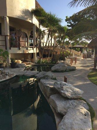 Mezzanine Colibri Boutique Hotel: Pool/resturant area