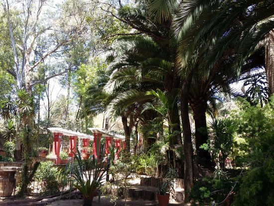 Museo Exhacienda San Gabriel de Barrera : Lush plants and trees and old structures