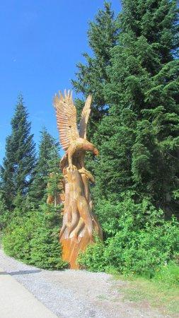 North Vancouver, Canada: Eagle!