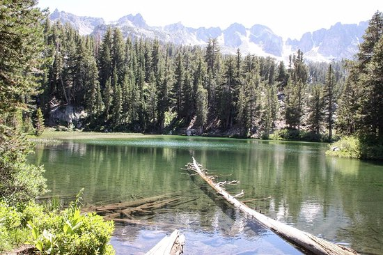 coldwater campground updated 2018 reviews mammoth lakes ca
