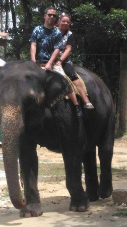 Tangalle, Sri Lanka: back on the elephant