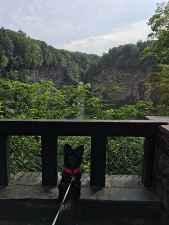Trumansburg, Nowy Jork: Overlook