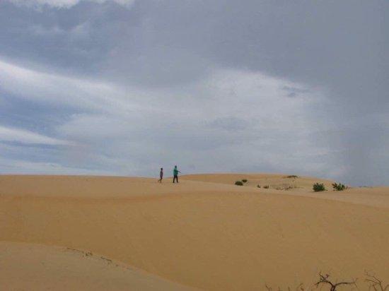 Medanos de Coro National Park: photo2.jpg