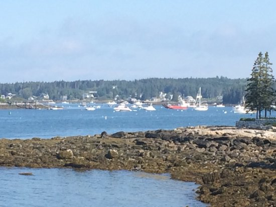 Port Clyde, ME: photo2.jpg