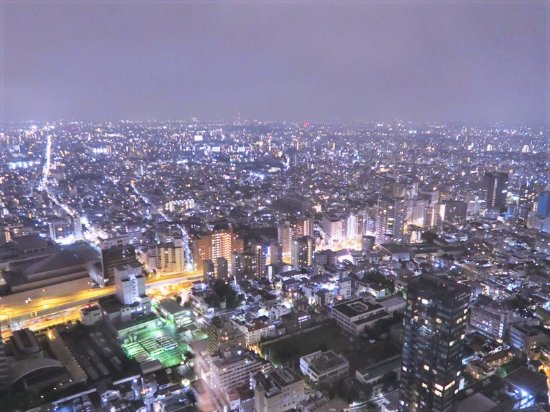 Park Hyatt Tokyo: view from our room
