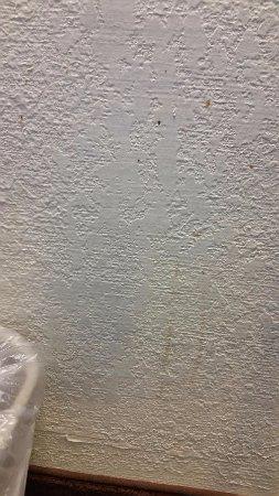 Gastonia Picture