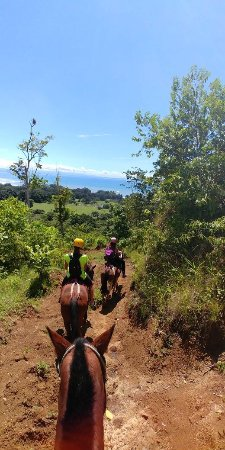 Пуэрто-Хименес, Коста-Рика: photo0.jpg