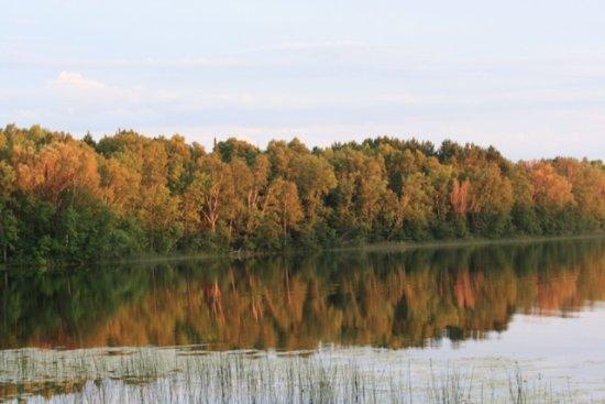 Moose Lake Photo