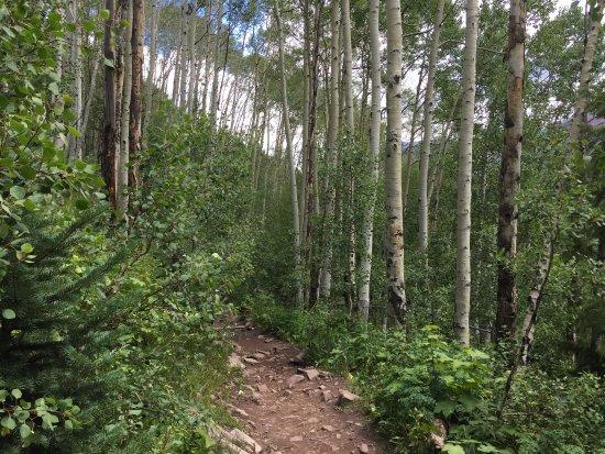 Glenwood Canyon Resort: photo2.jpg
