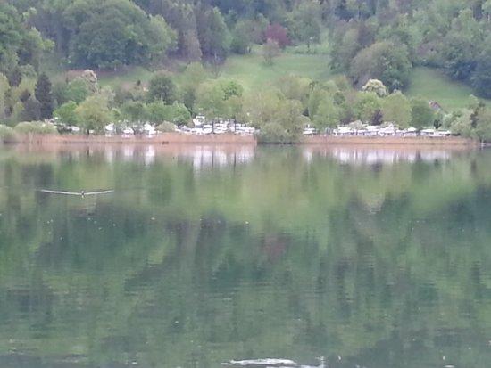 Hausen am Albis, Suiza: Camping - Strandbad - Restaurant Türlersee