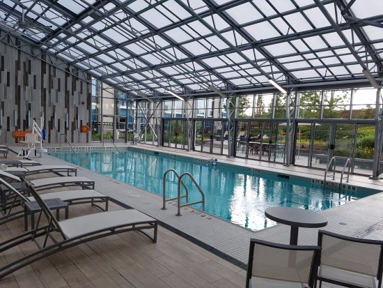 Hilton toronto airport hotel suites hk 844 h k 1 for Pool show mississauga