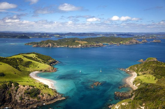 Bay of Islands Day Tour fra Auckland
