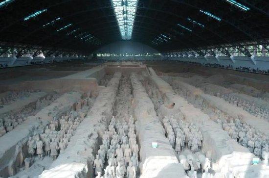 Museum för Qin Terra-cotta Warriors och ...