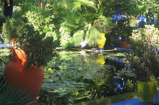 Majorelle-Garten, und Palmeraie...
