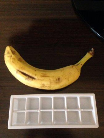 Tunkhannock, PA: Cute little ice tray in the fridge