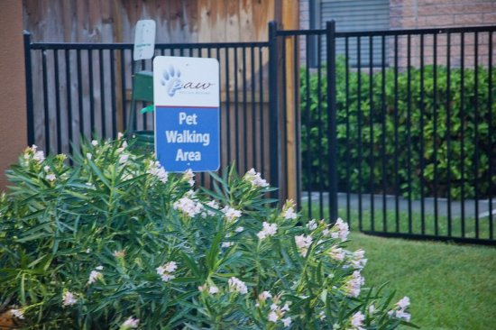 Katy, Τέξας: Candlewood Suites Houston Park 10 Welcomes YOUR pet!