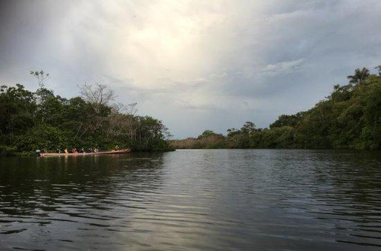 4-tägige Cuyabeno Nationalpark Tour...
