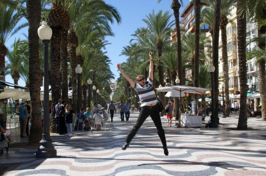 Alicante Private Half-Day Tour with...
